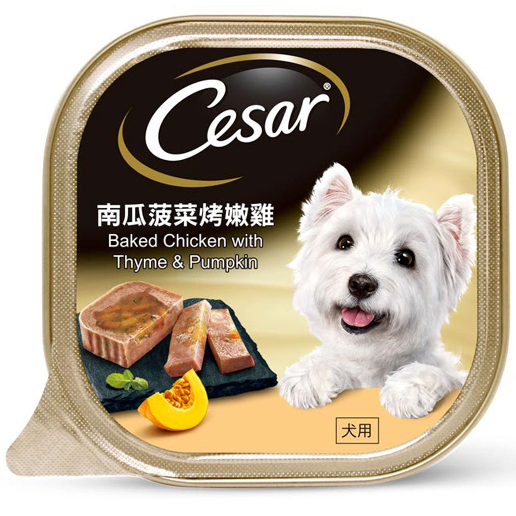 10% OFF [NEW]: Cesar® Baked Chicken With Thyme & Pumpkin Pate Tray Wet Dog Food 100g (12/24pcs)