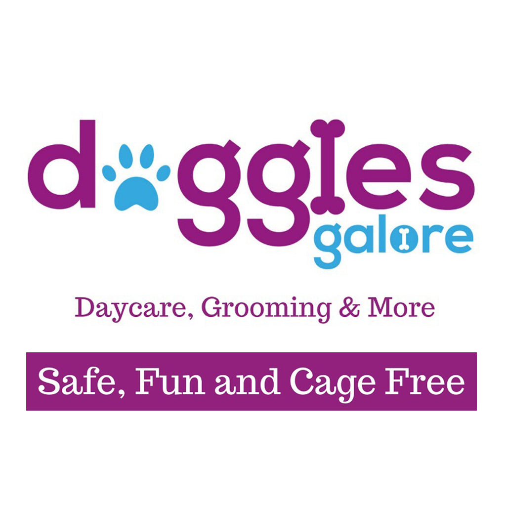 Doggies Galore® – Safe, Fun & Cage Free Care