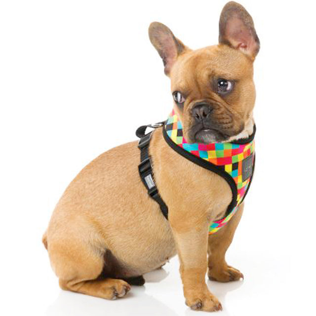 30% OFF: FuzzYard® 1983 Dog Harness (5 sizes)
