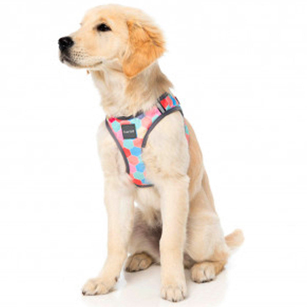 15% OFF [NEW]: FuzzYard® The Hive Step In Dog Harness (2 sizes)