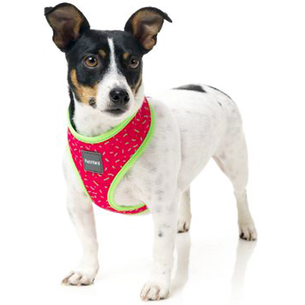 15% OFF [NEW]: FuzzYard® Juicy Step In Dog Harness (2 sizes)