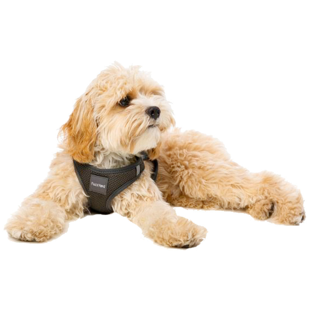 15% OFF [NEW]: FuzzYard® Space Step In Dog Harness (3 sizes)