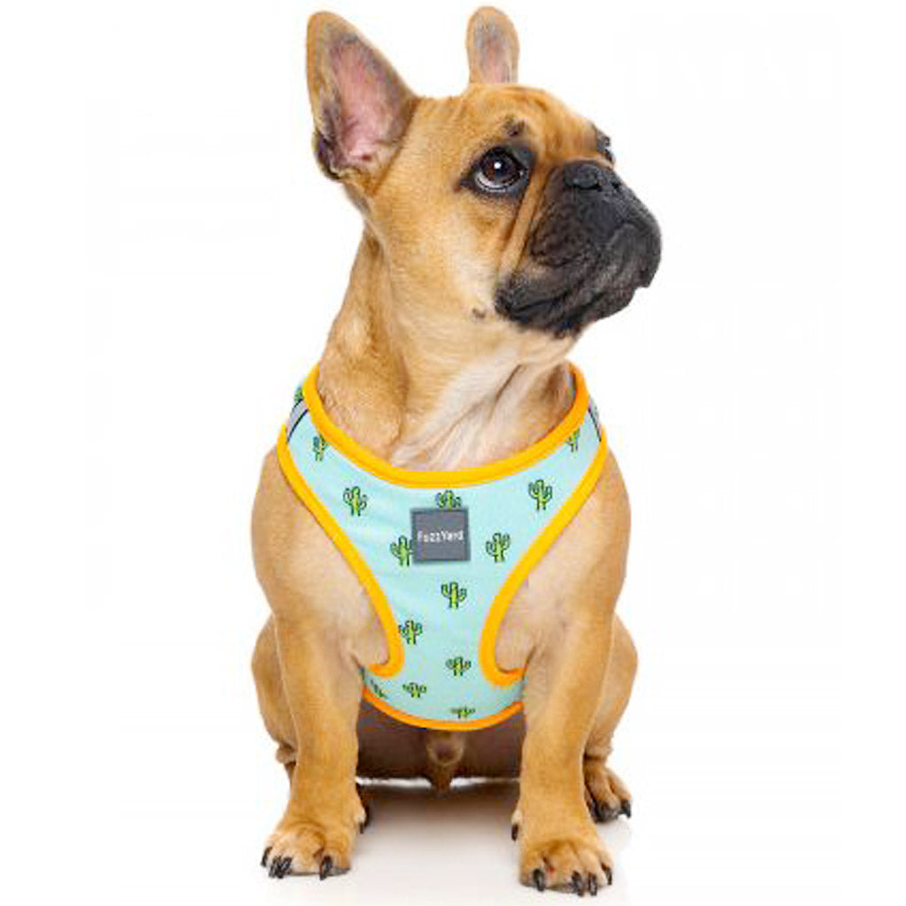 15% OFF [NEW]: FuzzYard® Tucson Step In Dog Harness (3 sizes)