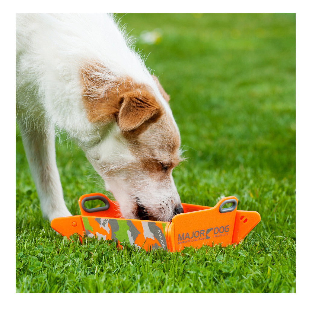 50% OFF [EXPO20]: Major Dog® Foldable Dog & Cat Bowl