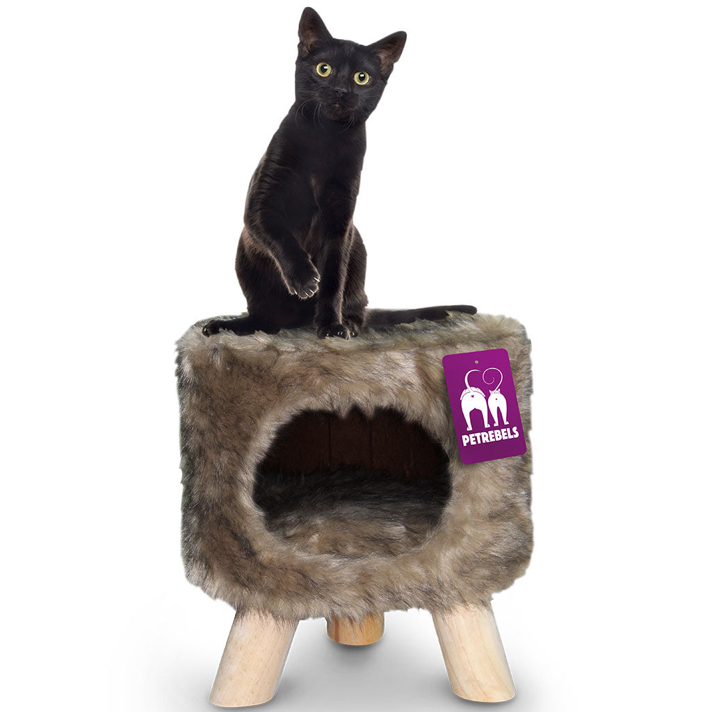 15% OFF: Petrebels® Victoria 45 Royal Cat Throne - Royal Brown