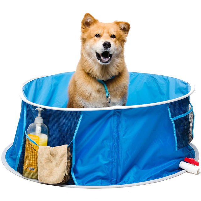 60% OFF: CJ® Pop-Up Pet Bath (Medium)