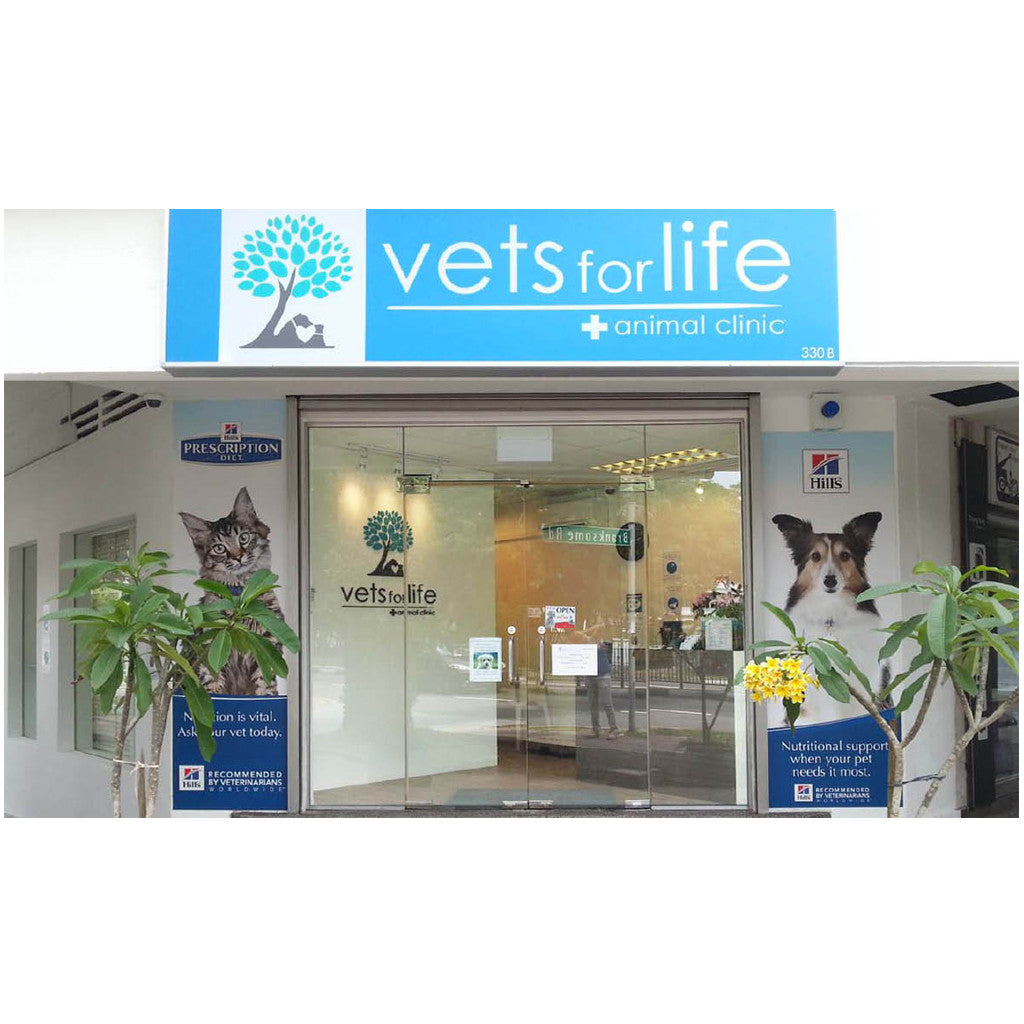 Vets For Life® – Professional, Compassionate & Dedicated