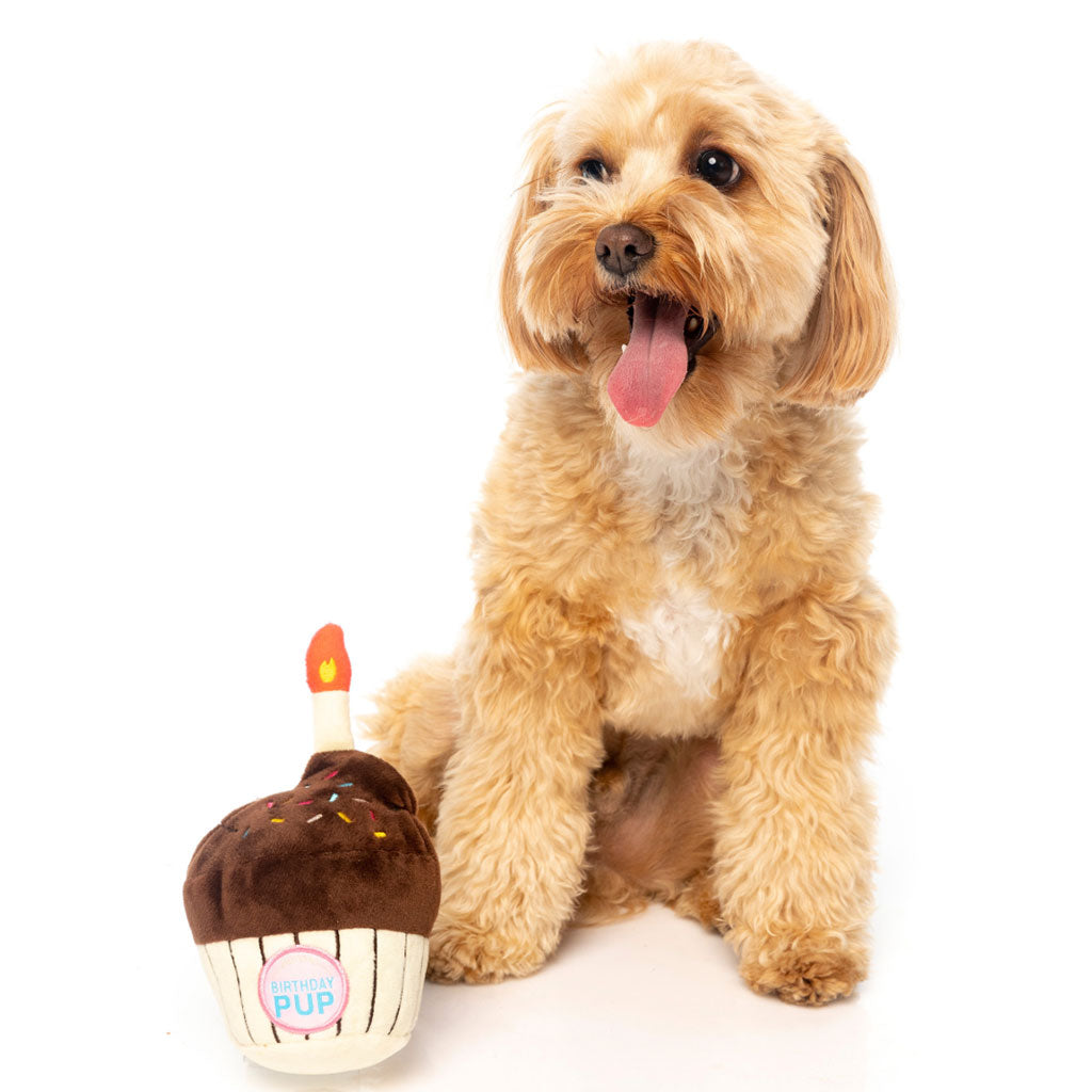 15% OFF [NEW]: FuzzYard® Birthday Cupcake Plush Dog Toy