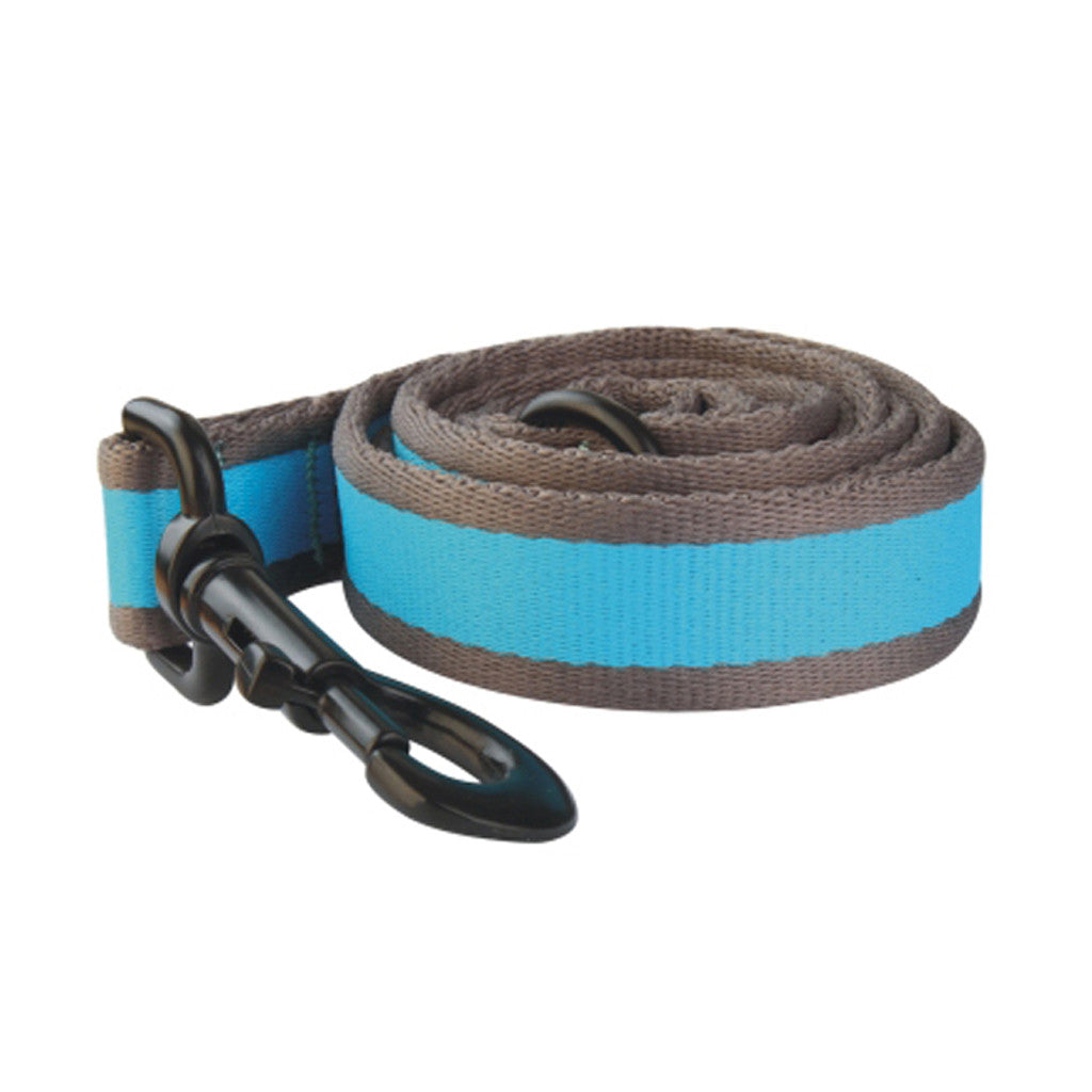 40% OFF: Ipet Mini® Contrast Collection Dog & Cat Leash (Turquoise & Grey)