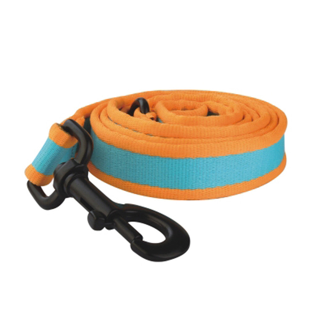 40% OFF: Ipet Mini® Contrast Collection Dog & Cat Leash (Turquoise & Orange)