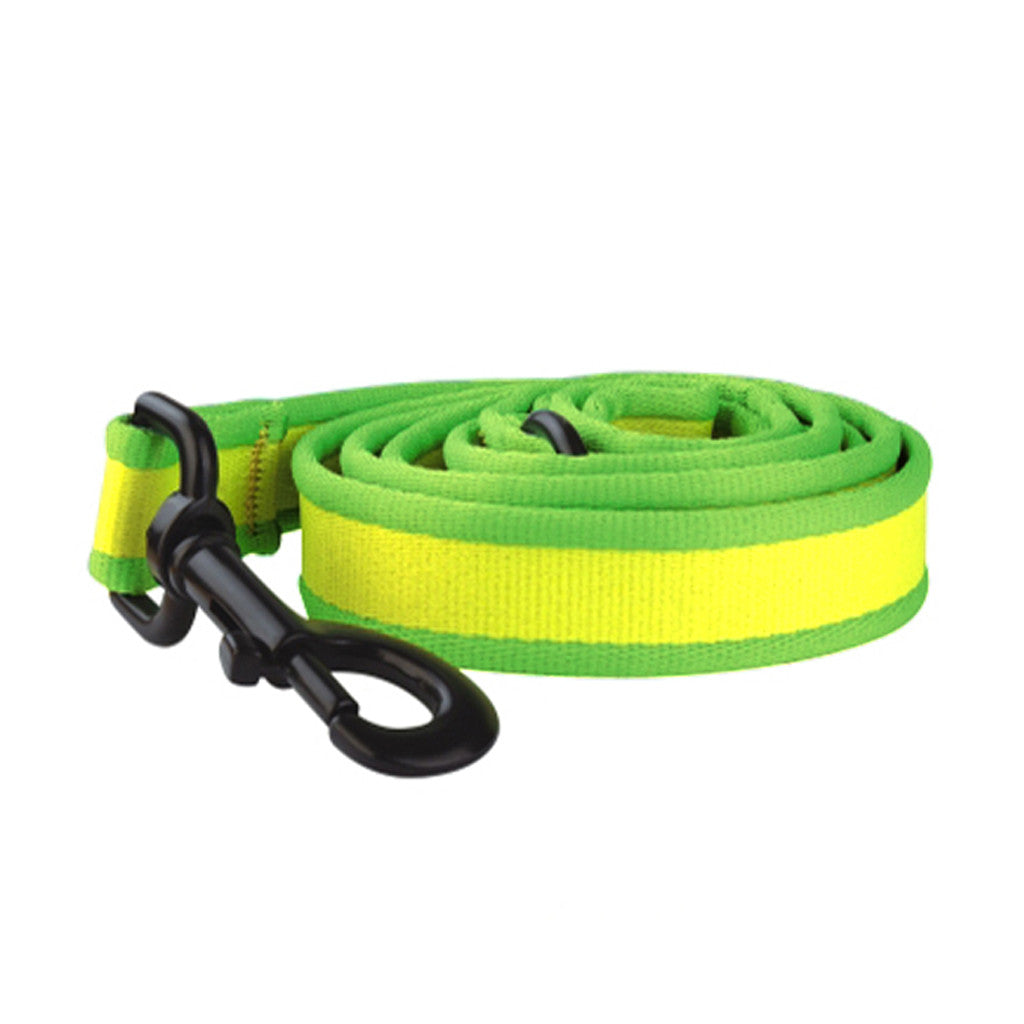 40% OFF: Ipet Mini® Contrast Collection Dog & Cat Leash (Yellow & Green)