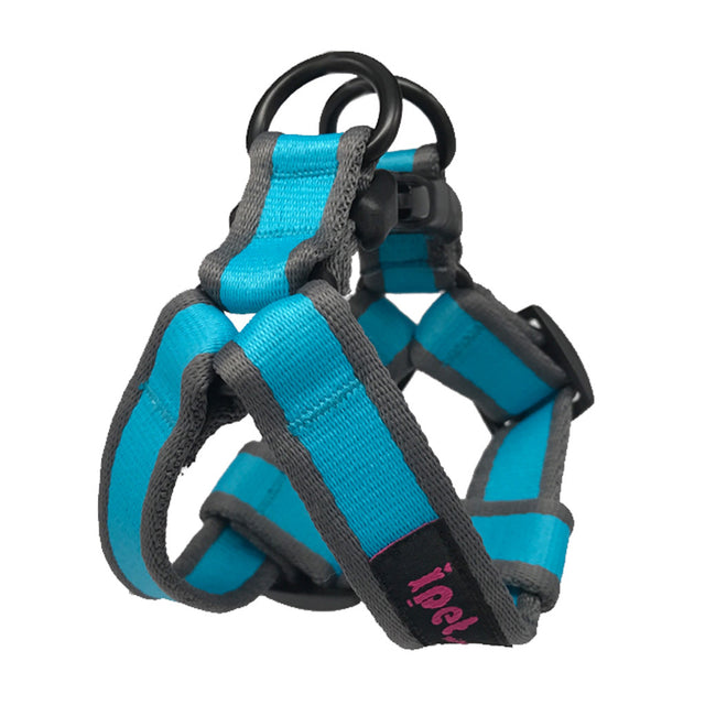 40% OFF: Ipet Mini® Contrast Collection Dog & Cat Harness - Turquoise & Grey (2 sizes)