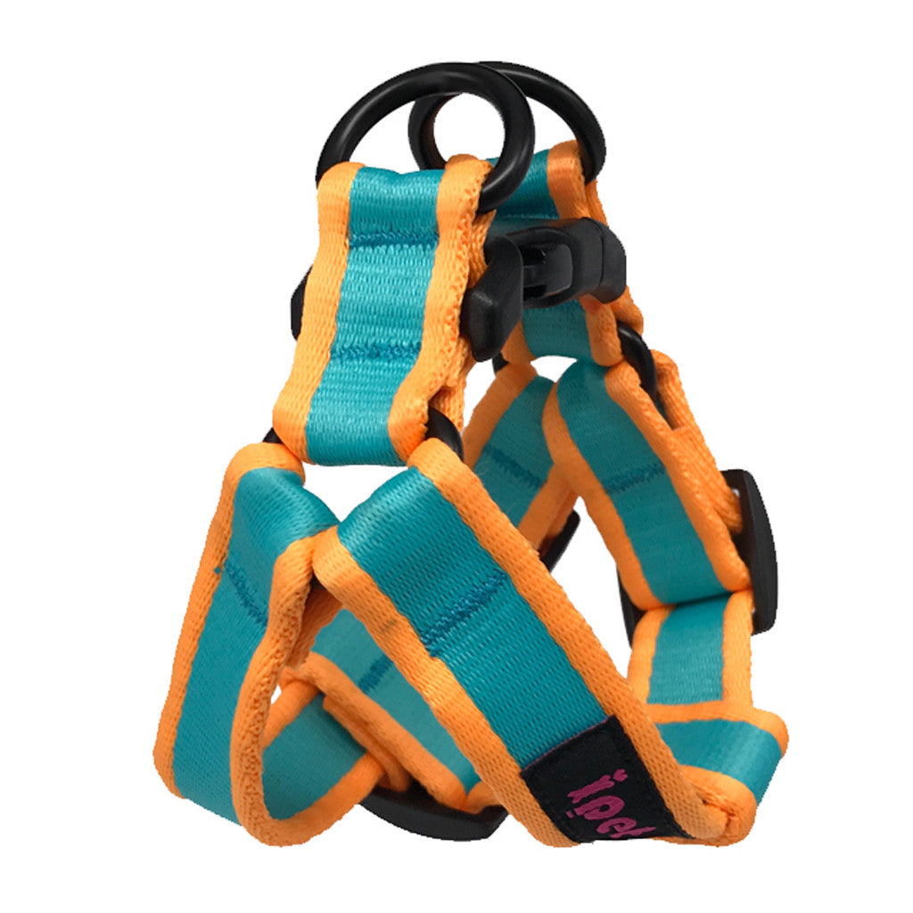40% OFF: Ipet Mini® Contrast Collection Dog & Cat Harness - Turquoise & Orange (2 sizes)