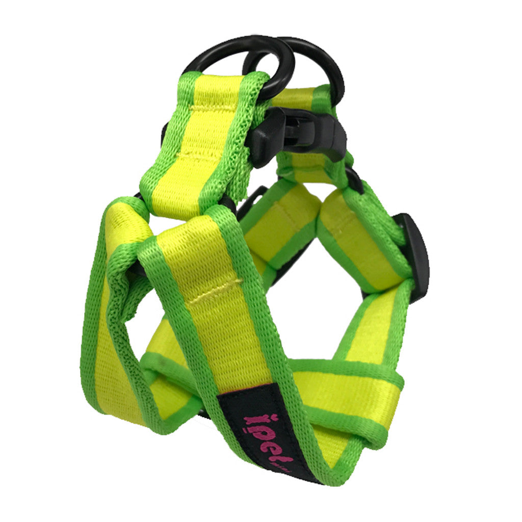 40% OFF: Ipet Mini® Contrast Collection Dog & Cat Harness (Yellow & Green)