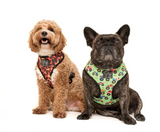 BIG AND LITTLE DOGS REVERSIBLE HARNESS - TRUCK YEAH!