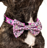 "BIG AND LITTLE DOGS DOG COLLAR AND BOW TIE - ""ONE OF A KIND"""