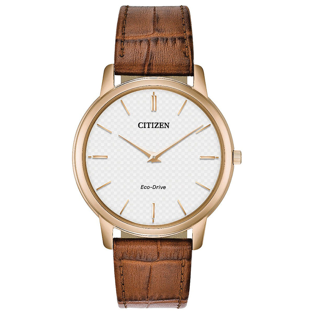 Citizen Eco-Drive Gents Watch AR1133-15A