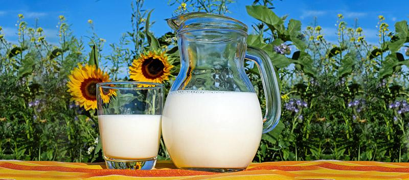 GOT MILK? The Key Differences Between Cow, Soy, Almond and Rice Milk