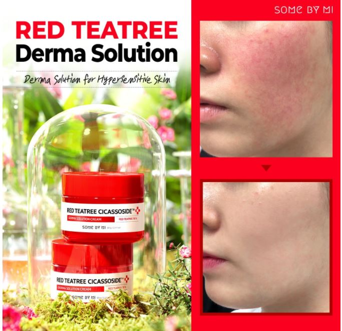SOMEBYMI™ Red Teatree Cicassoside Derma Solution Cream