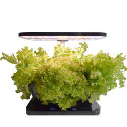the MicroFarm Tabletop household hydroponic system