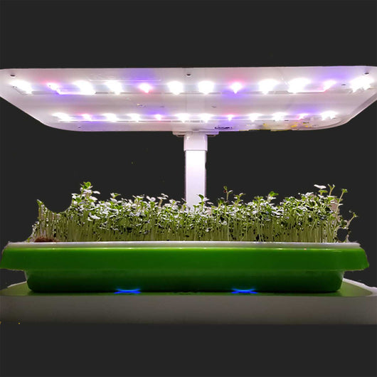 Led Grow Light System And Control Base Perfect For Microgreens And Hou Hydropro Sales
