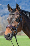 Amerigo Vespucci Traditional Dressage Bridle