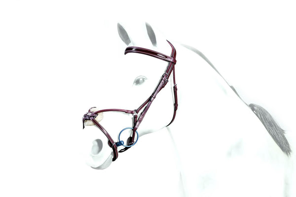 Equipe Patent Rolled Leather Grackle Bridle (BR33)