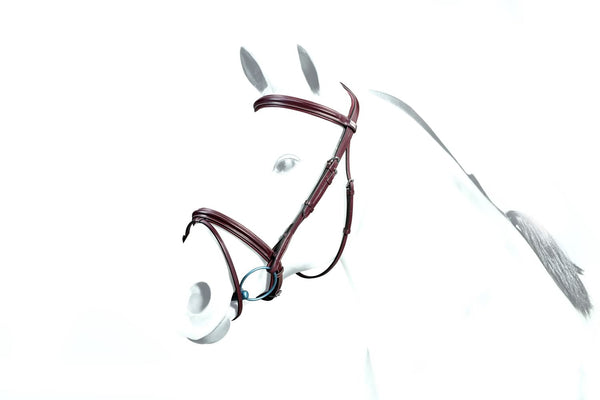 Equipe Padded Flash Bridle (BR35)