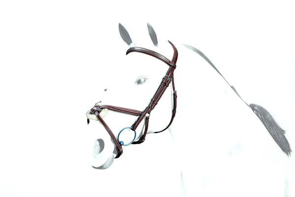 Equipe Grackle Bridle with Clinchered Browband (BR37)