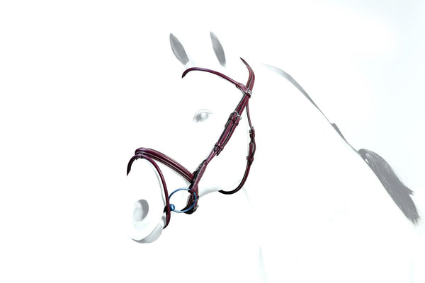 Equipe Rolled Flash Bridle (BR39)