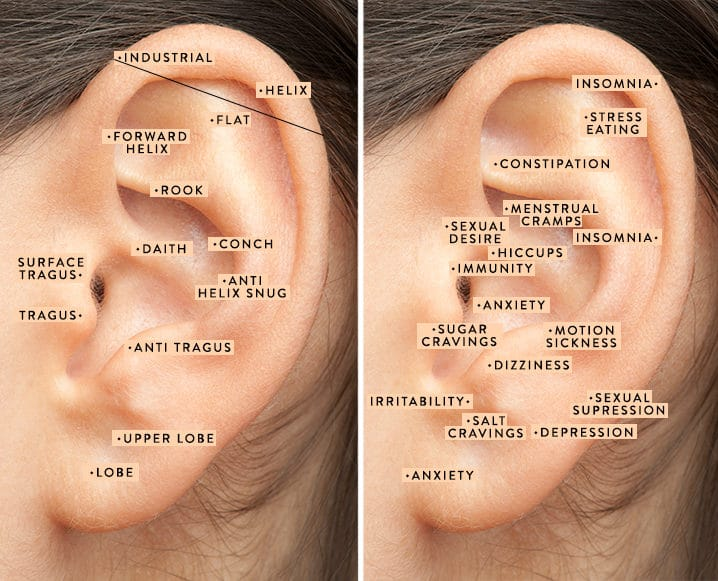 auriculotherapy ear acupuncture ear piercing areas bodyj4you