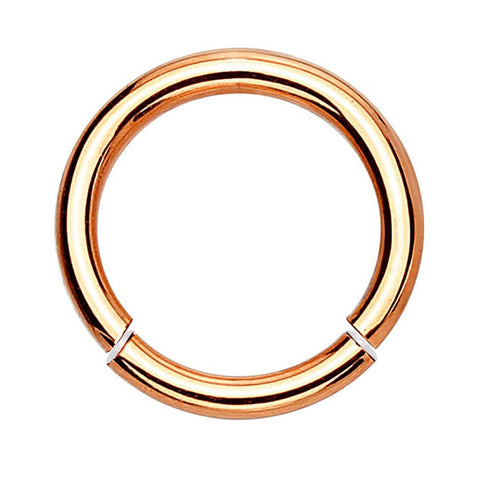 BodyJ4You 14 Gauge Goldtone Stainless Steel Segment Ring - BodyJ4you