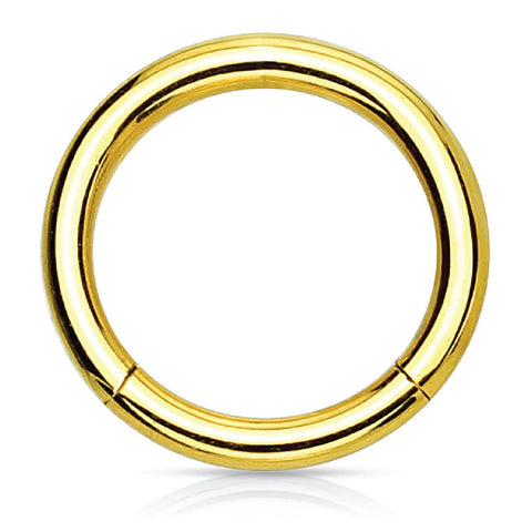 Piercing Ring Hinged Clicker Segment Hoop 4G-20G Goldtone Steel Nose Septum Lip Tragus - BodyJ4you