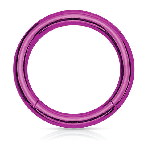 Piercing Ring Hinged Clicker Segment Hoop 4G-20G Purple Steel Nose Septum Lip Tragus - BodyJ4you