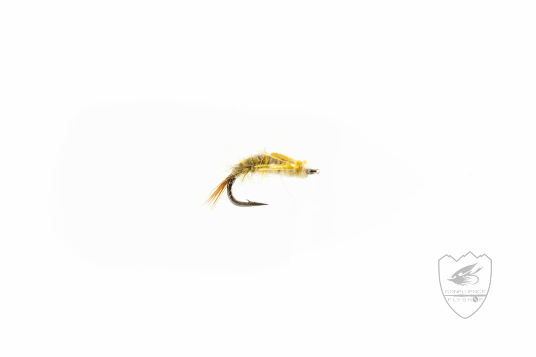 Barrs Flashback Emerger,Fly,Confluence Fly Shop-Confluence Fly Shop