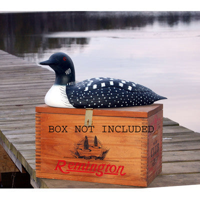 Hand Painted Loon