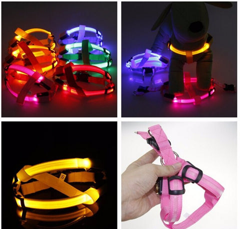 Nylon LED Night Light Safety Harness - Pet Cat or Dog Collar Harness Vest - FOURPAWPALS
