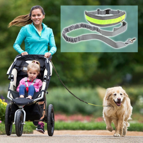 Reflective Bungee Style Adjustable Waist Hands Free Dog Leash for Running, Jogging & Walking - FOURPAWPALS