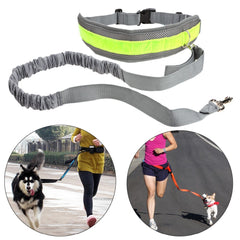 Reflective Bungee Style Adjustable Waist Hands Free Dog Leash for Running, Jogging & Walking