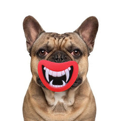 Durable and Safe Funny Fangs Squeaky Dog Toy