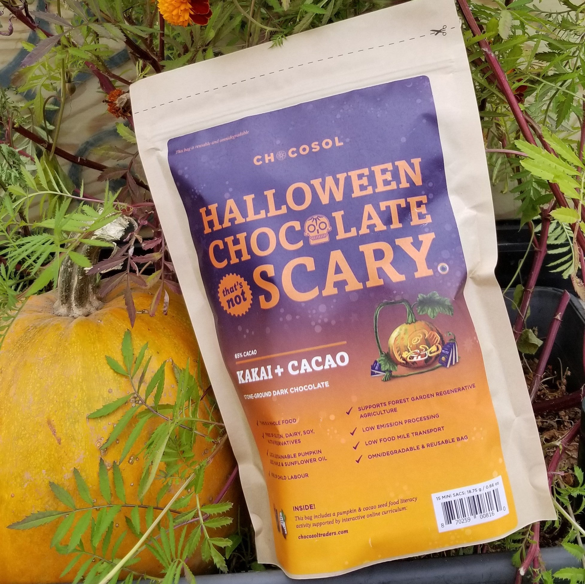 Halloween Chocolate That's Not Scary