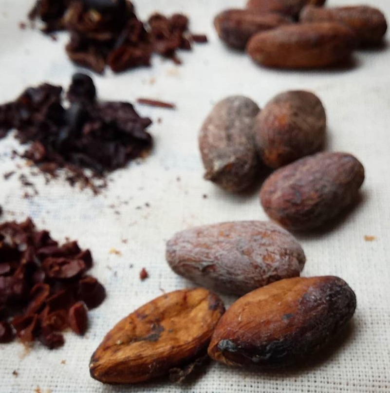 An Uncommon Partnership: Working Together to Disrupt the Cacao Supply Chain