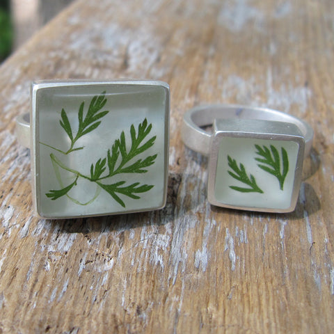Ferns rings