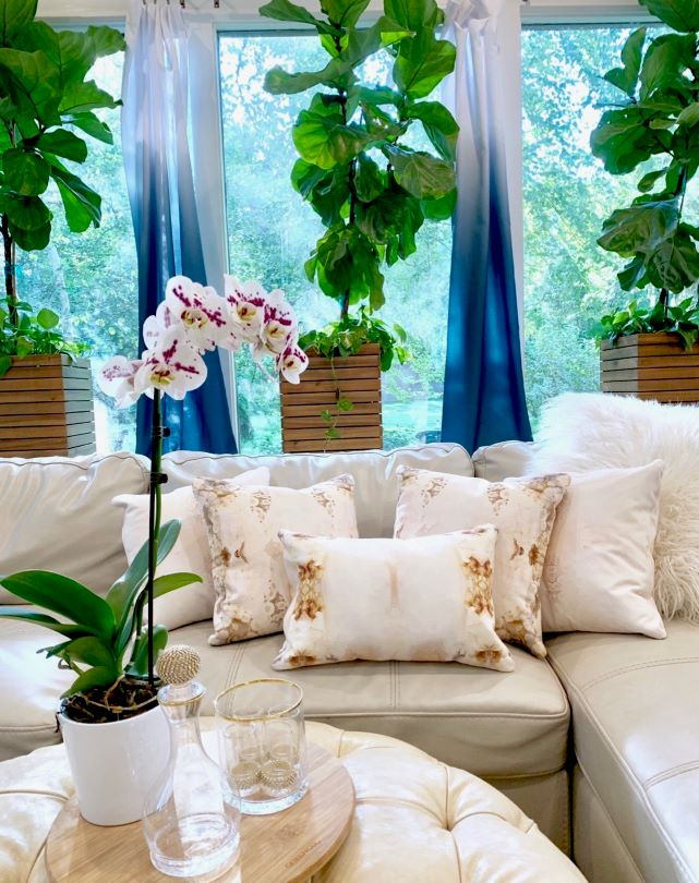 Sun room pillows on white leather couch