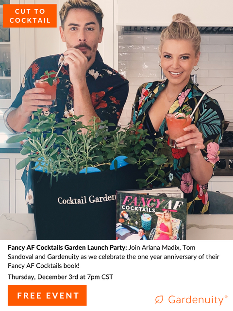 FREE Cut to Cocktail: A 'Fancy AF' Virtual Mixology Event with Ariana Madix + Tom Sandoval of Vanderpump Rules | December 3rd at 7:00 PM CST