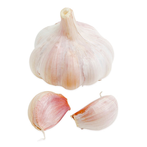 Garlic Bulbs for Planting - Music and Early California