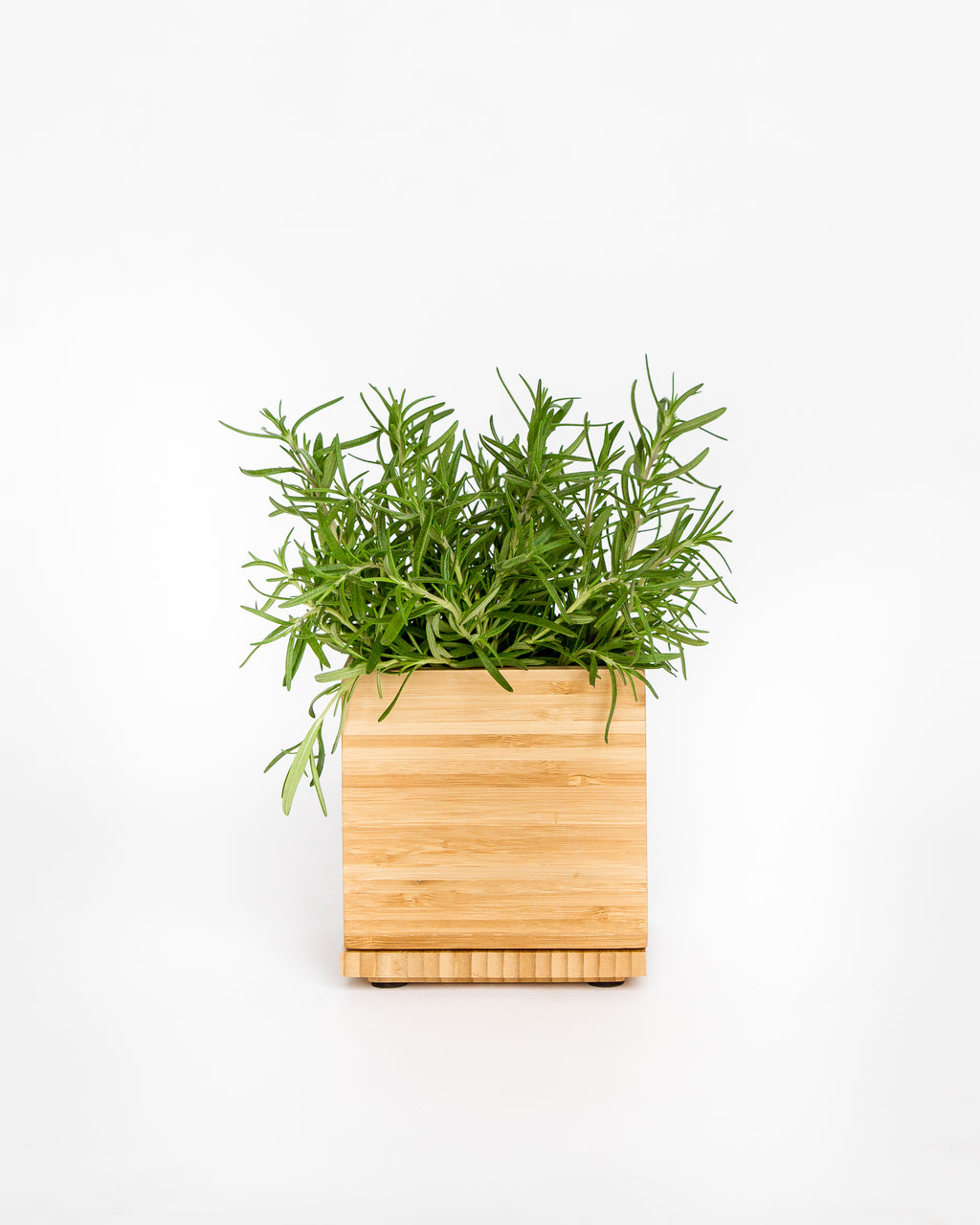 Bamboo Planter Box