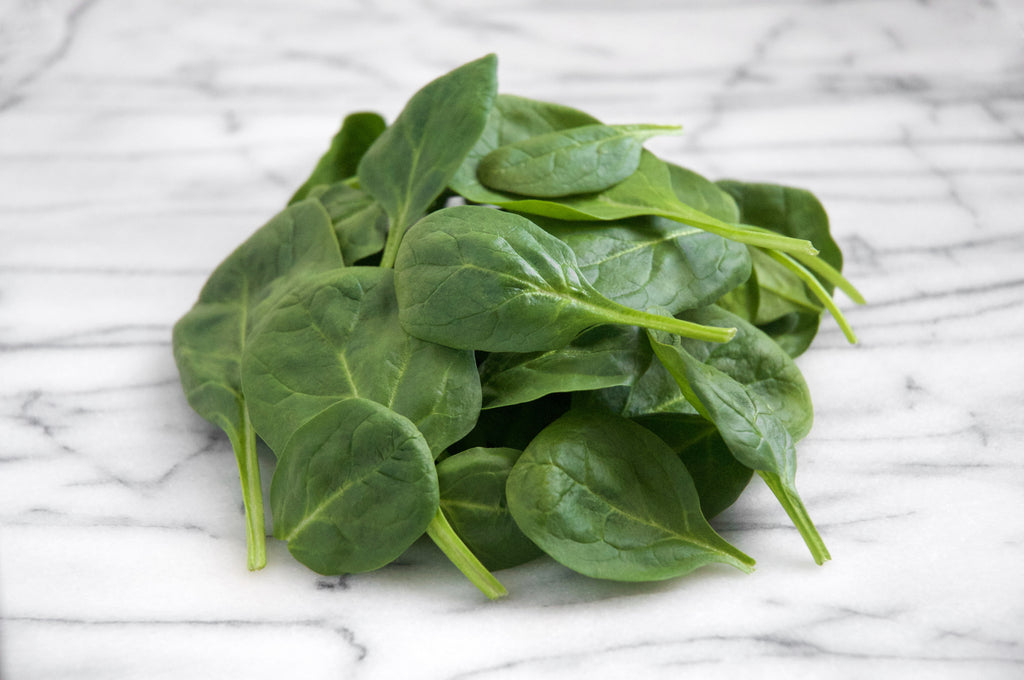 Spinach - Organic Seed Square 12x12