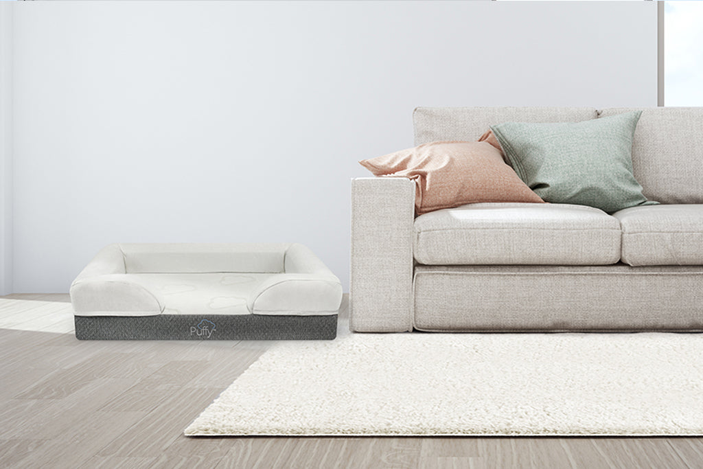 Puffy Dog Bed in a living room | Puffy