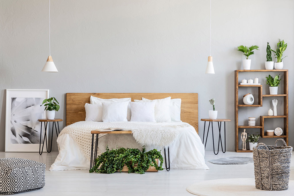 Tip #3: Accessorising Your Bedroom With Decorative Plants
